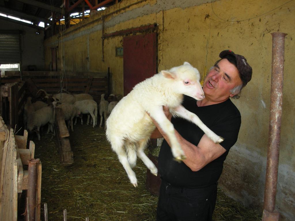 Agriturismo con Animali a Spoleto
