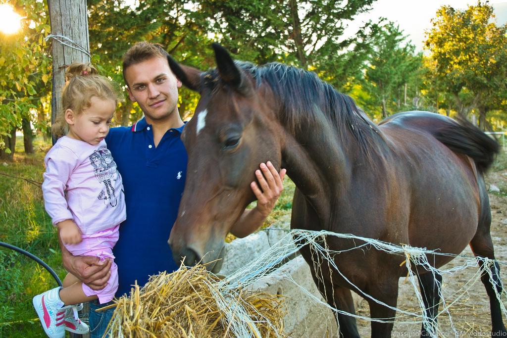 Cavalli in Agriturismo a Spoleto