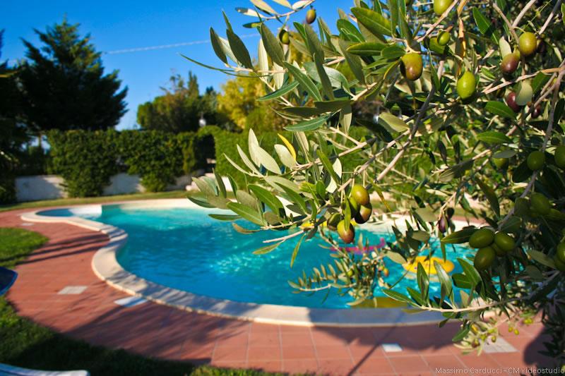 Offerta LUGLIO con bambini a Spoleto in Agriturismo con Piscina