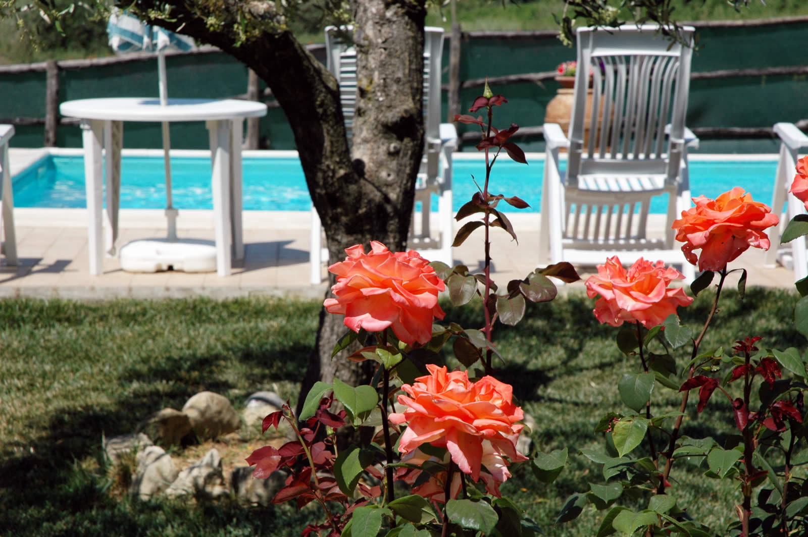 Appartamenti per vacanze a Deruta con Piscina