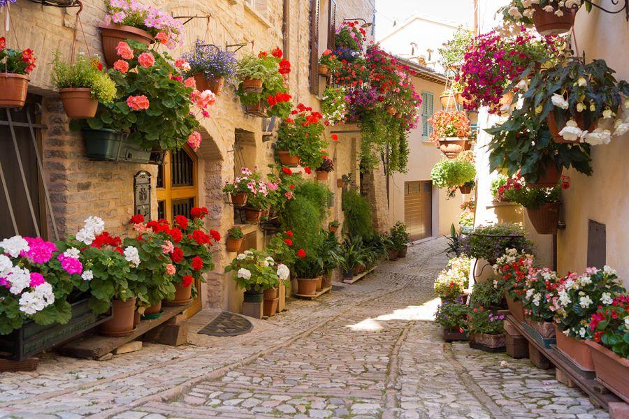 Casa Vacanze Borgo Fiorito di Spello