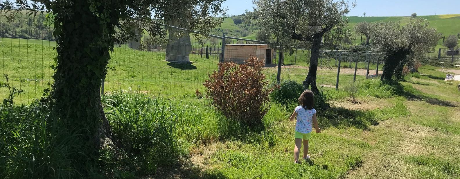 Cosa fare con i bambini in Umbria nel Weekend 11-12-13 Maggio: Umbriabimboweekend!