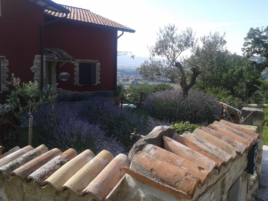 B&B panoramico e tranquillo vicino Gualdo Tadino