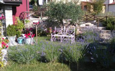 Lastsecond PASQUA in B&B per coppie o famiglie in Umbria centrale