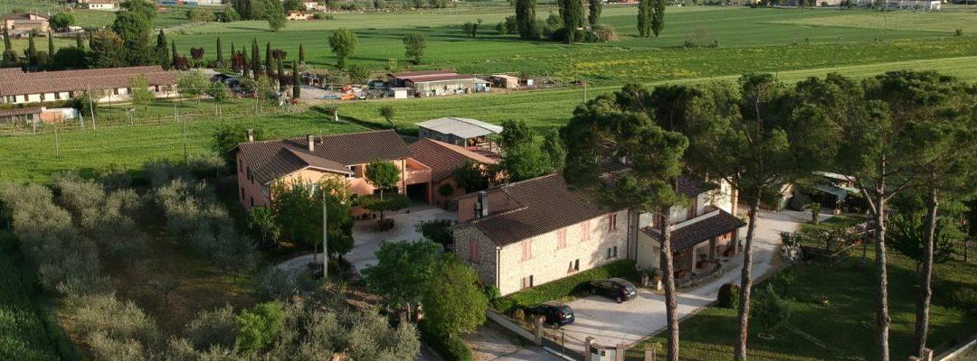 Casa vacanze il Fiore di Assisi