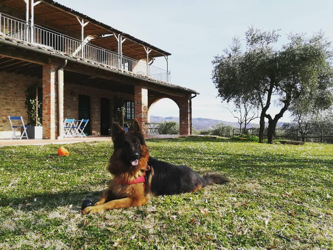 Vacanze con bambini tra Umbria e Toscana