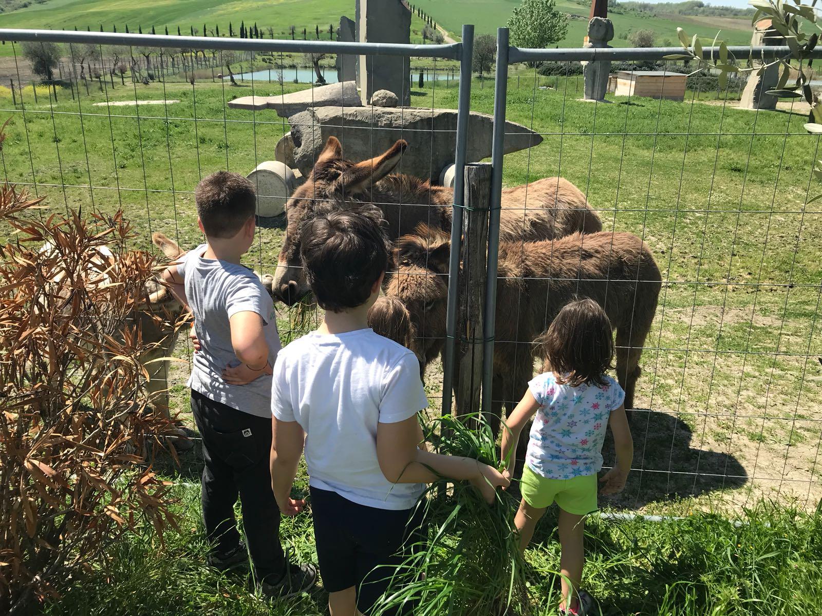 Dove portare i bambini a fare un pic nic in Umbria