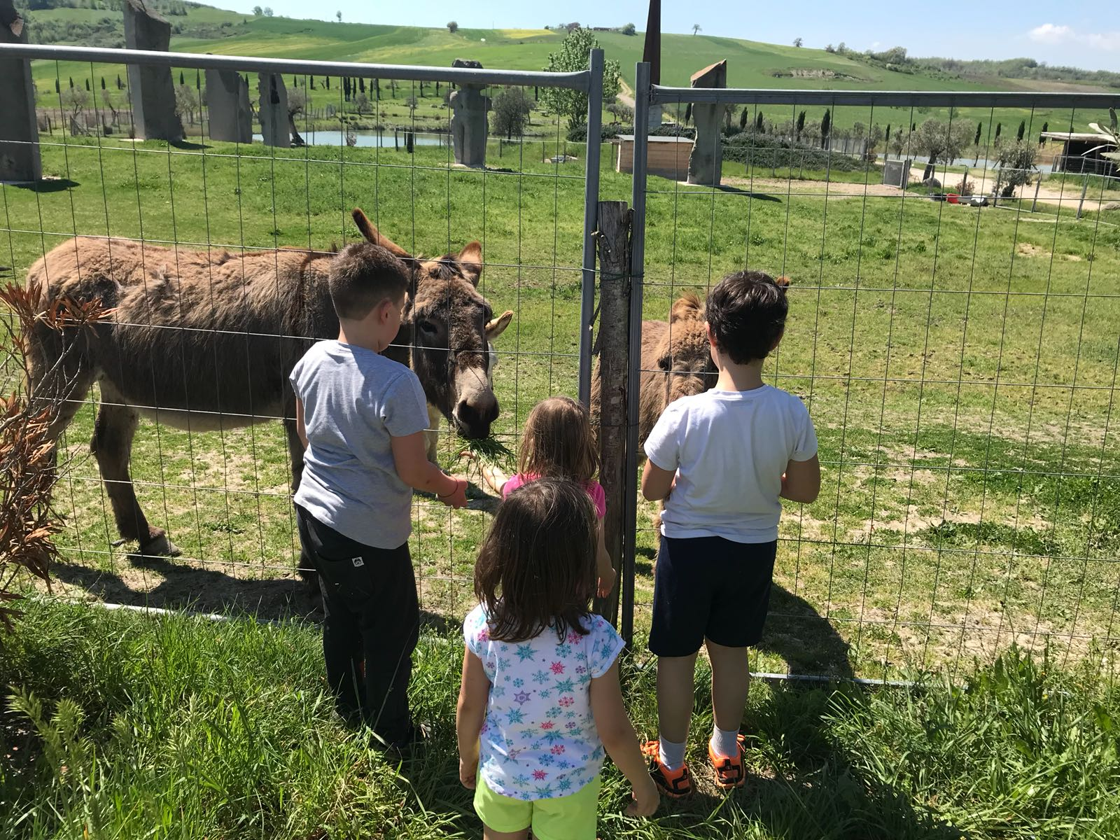 Gita con bambini in campagna in Umbria