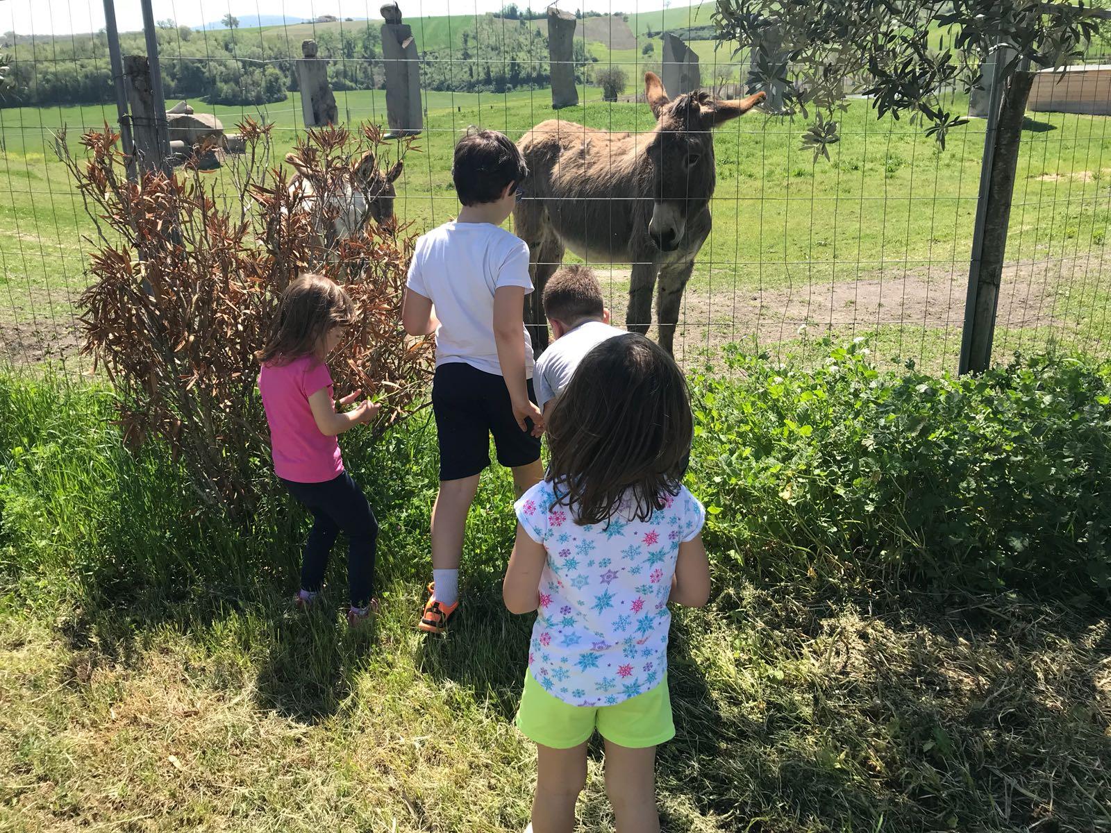 Parchi da vedere con bambini in Umbria