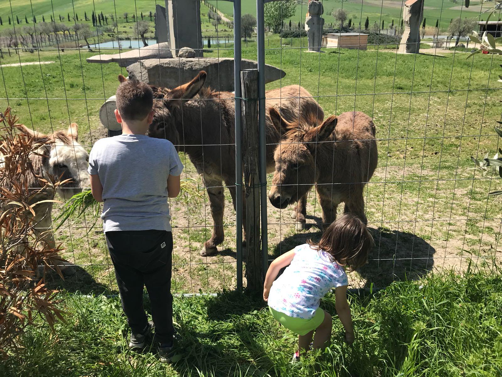 Parchi tematici per gite scolastiche in Umbria