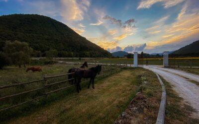Agriturismo B&B tra Marmore e Piediluco con allevamento animali della fattoria