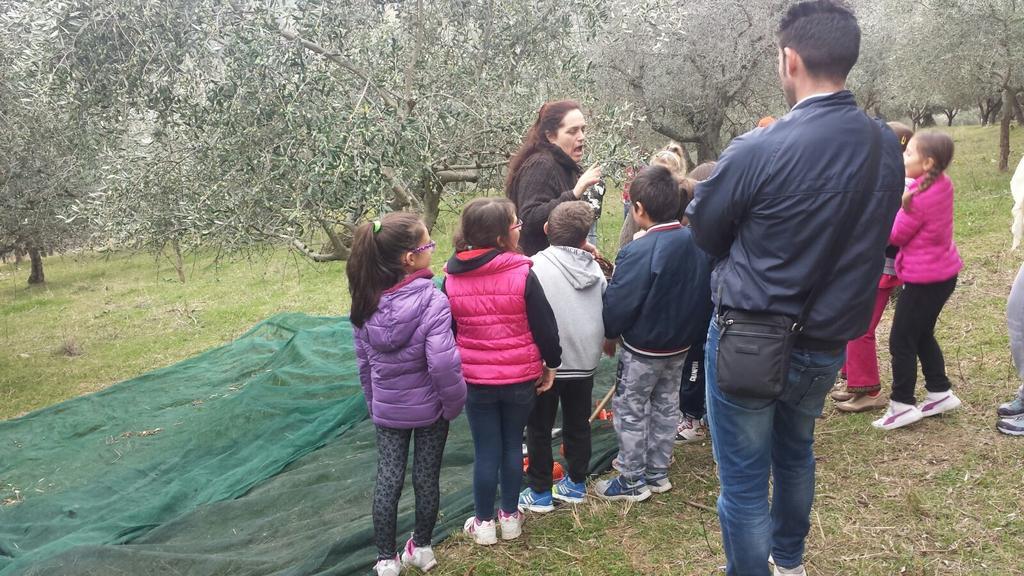 Agriturismo con fattoria didattica vicino Assisi
