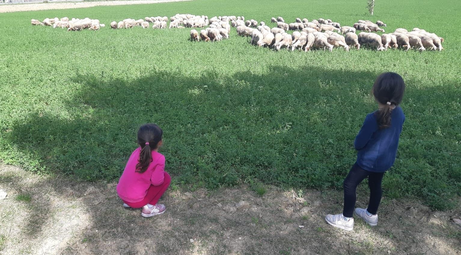 Agriturismo in campagna umbra per vacanza con bambini