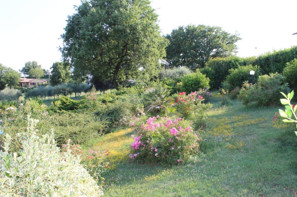 Vacanza con bambini in Umbria immersi nel verde e nella natura