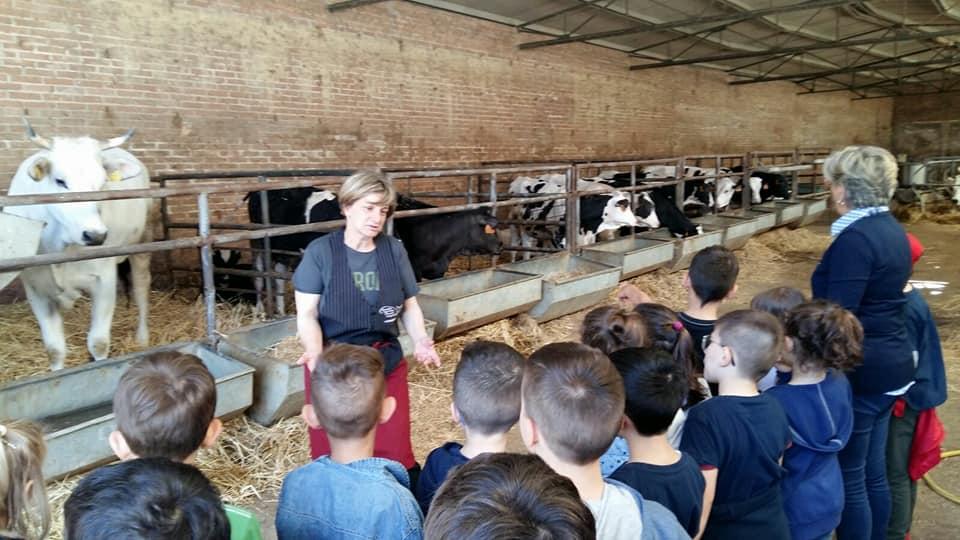 Visitare una fattoria didattica con i bambini in Umbria