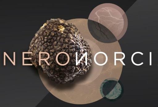 Mostra del Tartufo Nero di Norcia, l'eccellenza italiana in Umbria