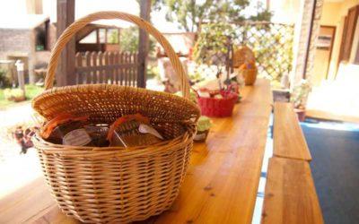 Offerta di Pasqua in agriturismo con Fattoria Didattica e Piscina a Spoleto