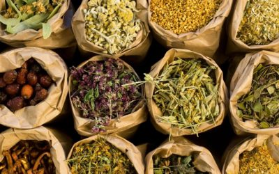 Alla scoperta di erbe aromatiche e frutti antichi ad Assisi
