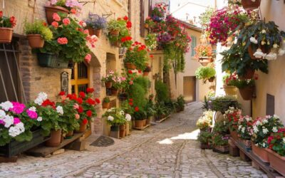 Offerta speciale LUGLIO in casa vacanza nel borgo di Spello, Umbria
