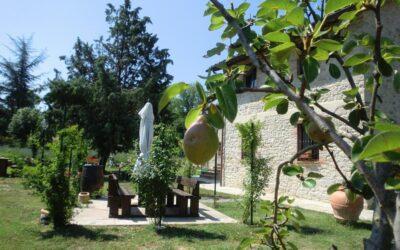 Ponte di OGNISSANTI in Umbria: appartamenti vacanza al Lago Trasimeno