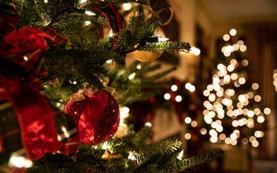 Natale in Umbria con bambini in Agriturismo con Fattoria a Perugia