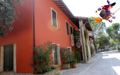 Offerta EPIFANIA ad Assisi in Agriturismo Biologico con Ristorante e Fattoria per bambini