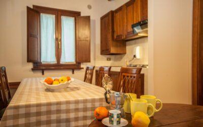 Offerta NATALE in Agriturismo a 5 Spighe con Fattoria vicino Assisi