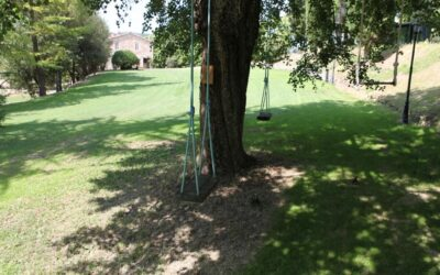 Speciale PONTE 8 DICEMBRE in Agriturismo con altalene sugli alberi a Perugia