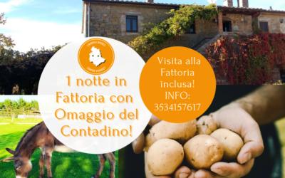 Regala 1 NOTTE IN FATTORIA con omaggio del contadino in Umbria!