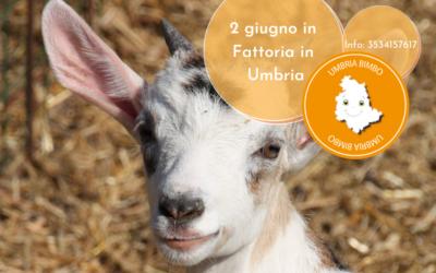 Ponte del 2 GIUGNO in Fattoria con tanti animali tra Perugia ed il Lago Trasimeno