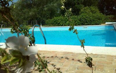 Estate ad Assisi! Offerta LUGLIO in Agriturismo con ristorante e piscina!