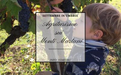 SETTEMBRE in Agriturismo tra vendemmia e divertimento in Umbria!