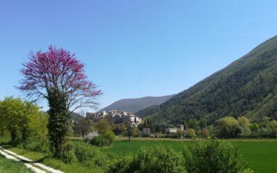 Ponte del 2 GIUGNO in Agriturismo con Fattoria Didattica in Valnerina